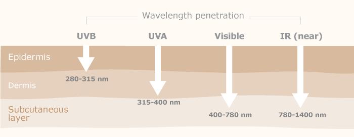 profundidad-radiacion-UV-piel