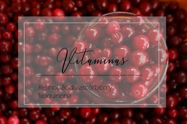 Vitaminas_retinol_ascorbico_y_filoquinona