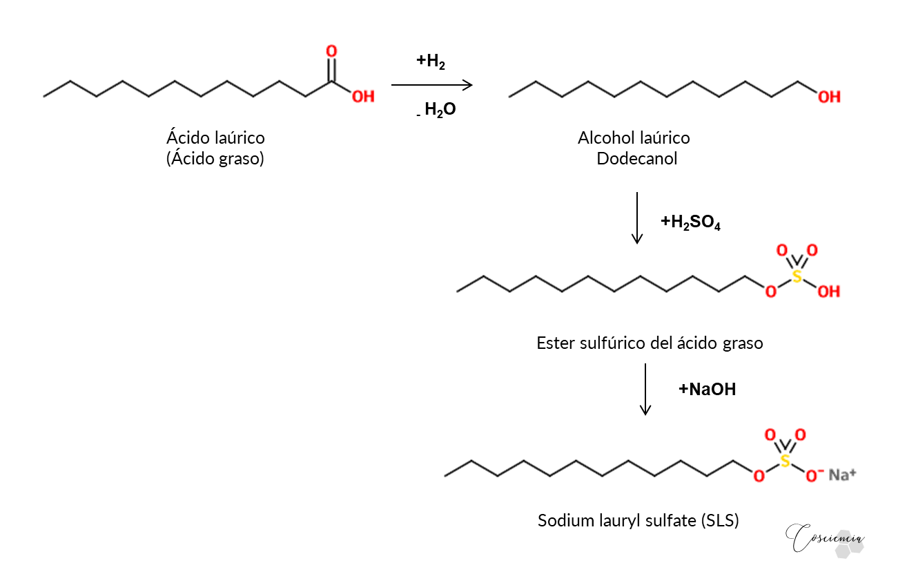 sintesis-sodium-lauryl-sulfate